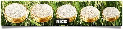 Rice Unda Kuruva Jaya Ponni Surekha Periyar
