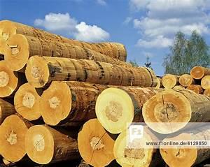Holzstämme Geschält Kaufen : holzst mme rundholz lagerung holzindustrie lizenzpflichtiges bild bildagentur f1online ~ Orissabook.com Haus und Dekorationen