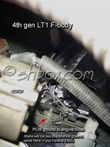 Urgent Odd Knock Sensor Voltage   Short  Bad Ground