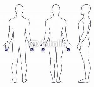 Outline of Human Body Clipart (44+)