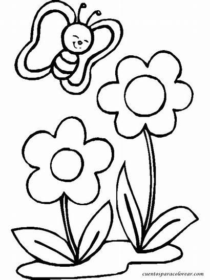Flores Colorear Dibujos Pintar Flor Coloring Bonitas