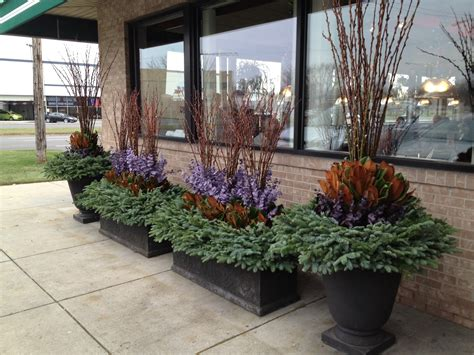 winter container gardening dirt simple