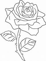 Rose Clipart Coloring Pages Line Clipground sketch template