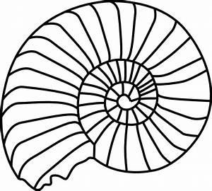 Spiral Shell Clip Art at Clker.com - vector clip art ...