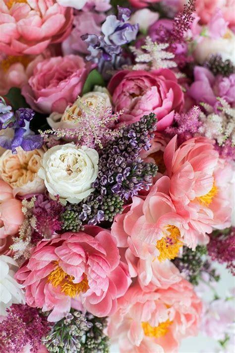 25 Best Ideas About Pink Flowers On Pinterest Flowers