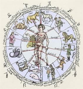 Medical Zodiac  15th Century Diagram Photograph By Sheila