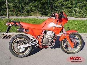 Honda Dominator 650 Fiche Technique : honda dominator 650 2536847 ~ Medecine-chirurgie-esthetiques.com Avis de Voitures
