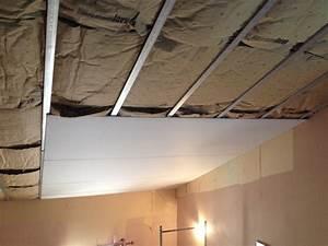 Faux Plafond Placo Sur Rail : plafond en placo sur rail 28 images pose des rails pour ~ Melissatoandfro.com Idées de Décoration