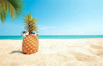 Pineapple Wallpapers Desktop Sommer Sunglasses Sand Sea