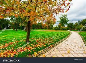 Beautiful Colorful Autumn Picturesque Park Sunny Stock ...