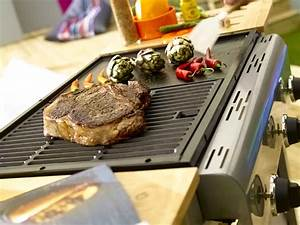 Barbecue Jetable Leroy Merlin