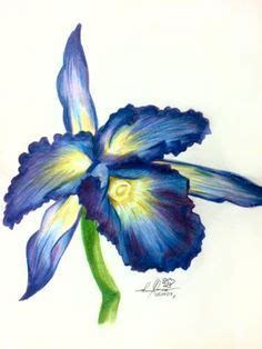 Coloring Flowers With Colored Pencils by Coloring Flowers With Colored Pencils Search