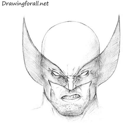 draw wolverines head drawingforallnet