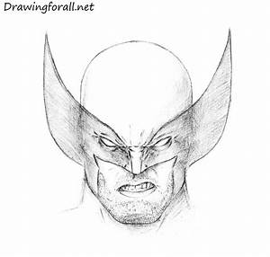 How To Draw Wolverineu002639s Head Drawingforallnet