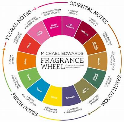 Perfume Families Fragrance Types Different Wheel Cologne