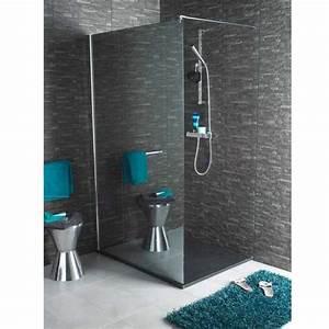 Panneau Hydrofuge Salle De Bain : paroi de douche lapeyre chrom salle de bain pinterest ~ Dailycaller-alerts.com Idées de Décoration