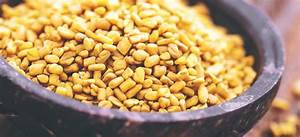 The Best Fenugreek Supplements Are The Future In Supplements