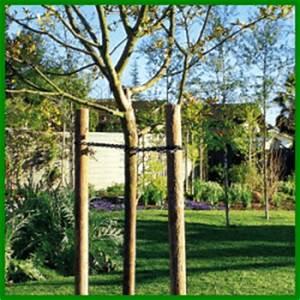 Junge Bäume Stützen : baumst tzen f r jeden frisch gepflanzten baum zu empfehlen ~ Articles-book.com Haus und Dekorationen