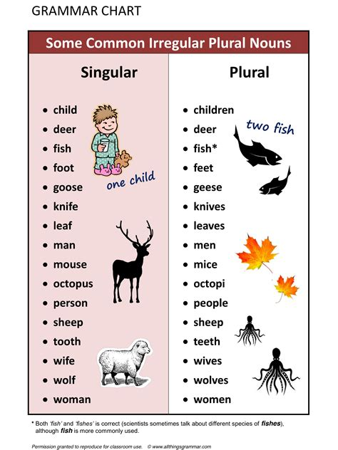 Forum    Fluent Landsome Common Irregular Plural Nouns  Fluent Land  English Pinterest