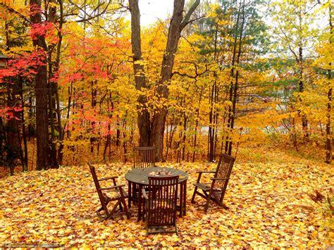 tlcharger fond d ecran automne arbres chaises de bureau paysage fonds d ecran gratuits pour