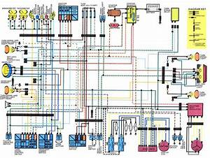 Honda Dominator Wiring Diagram