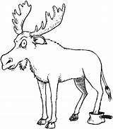 Forest Coloring Animals Pages Moose Kelp Drawing Animal Deciduous Getdrawings Getcoloringpages Mouse Cartoon Coloringpages101 sketch template