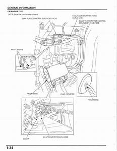 Honda Elite 80 Engine Diagram Honda Elite 50cc Scooter Wiring Diagram
