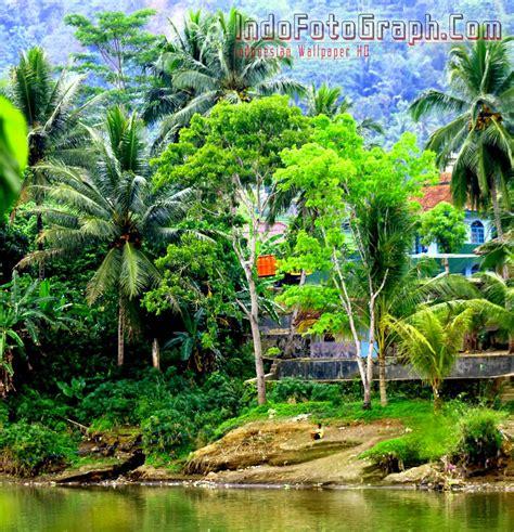 wallpaper pemandangan kampung pemandanganoce