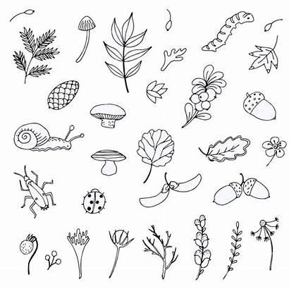 Doodles Nature Doodle Unconscious Personality Reveal Crosses