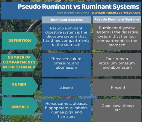 ruminant pseudo between difference systems summary vs