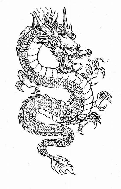 Dragon Japanese Tattoo Drawing Tattoos