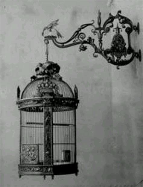 old fashioned bird cage bird cages pinterest