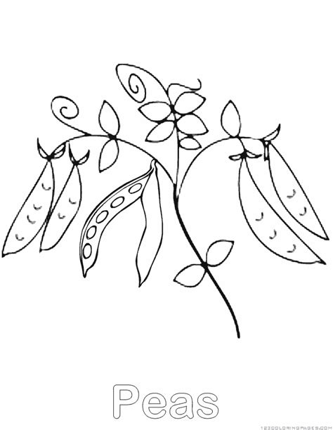 peas coloring pages