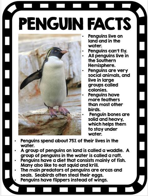 25 best ideas about penguin craft on winter 965 | f6cc777f2373db683421289cfbcb1f19