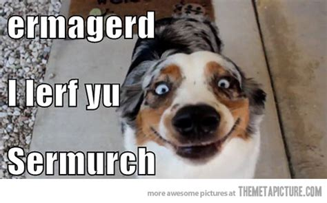 I Love You Meme Funny - funny i love you memes
