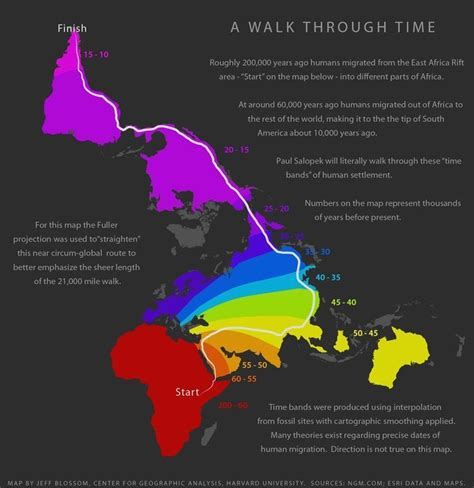 human migration map  walk  time genealogy