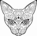 Skull Coloring Sugar Skulls Pages Animal Cat Adult Dog Colouring Advanced Dead Candy Drawing Vector Sheets Kidspressmagazine Books Line Element sketch template