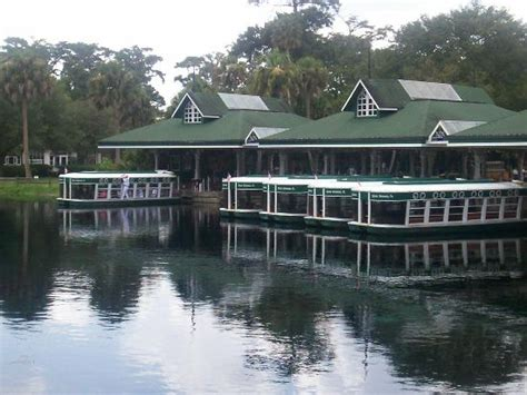 Silver Springs State Park Florida Glass Bottom Boat by Glass Bottom Boats Picture Of Silver Springs State Park