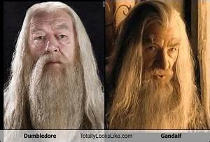 Dumbledore (Richard Harris) Totally Looks Like Gandalf ...