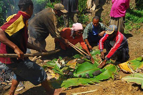 Mumu in Kopeng:Papua New Guinea:World Travel Gallery