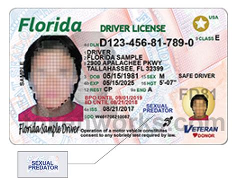 Florida Rolls Out New, More Secure License And Id Today