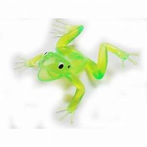 Squeaky Green Tree Frog Neon Jungle & Safari