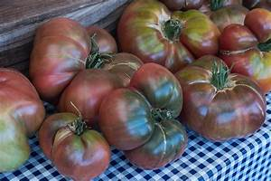 Tips for Growing Heirloom Tomatoes (from Market Farmers ...