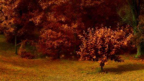 1080p Fall Backgrounds Hd by 48 Hd 1080p Fall Wallpaper On Wallpapersafari
