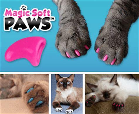 magic soft paws reviews customers speak