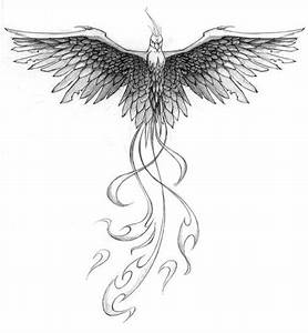 The 25+ best Phoenix drawing ideas on Pinterest | Pheonix ...