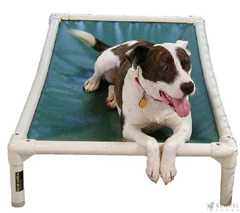 kuranda chew proof raised dog beds