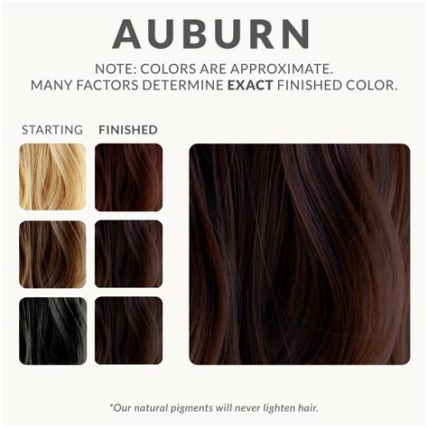 Auburn Henna Hair Dye Henna Color Lab Henna Hair Dye