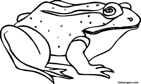 Free Printable Frog Coloring Pages Free Printable Sick Frog Coloring Pages For