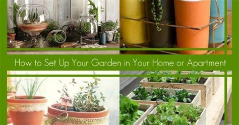 set   garden   home  apartment hometalk